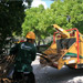 Arborcare crew feeding dead branches to the wood chipper